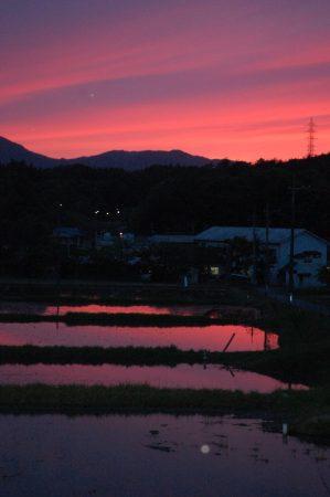 田んぼから帰る時には夕日だった