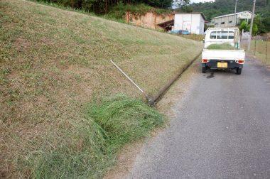 刈った草をブロアーで側溝迄落とします