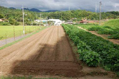除草対策で耕起