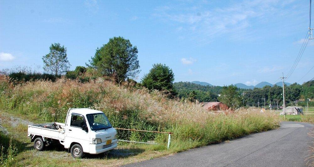 茅の下には4枚の小さな農地がある 左は残土で盛り上がり 右は湿地のまま