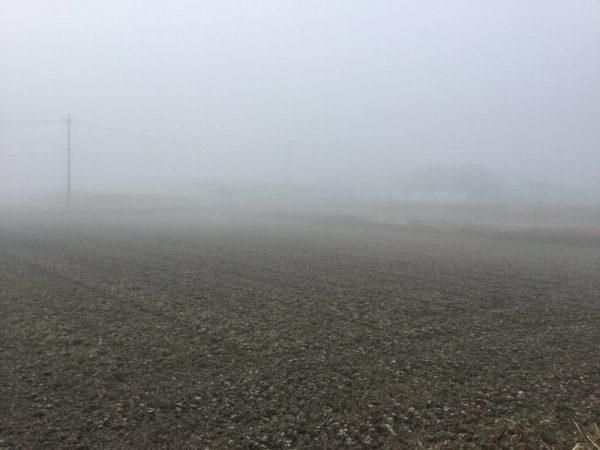 朝のコーヒーを飲んでいる間に霧で見えなくなる