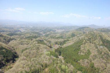 広島県中央部の山にも新緑が始まっていた