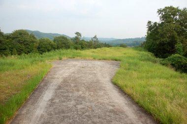 離着陸地点付近の草刈り前