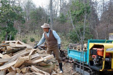 割った薪を運搬機に載せる
