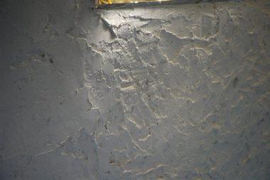 塗り終えた壁に日があたる