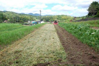 ③右端はトラクターで1回耕起