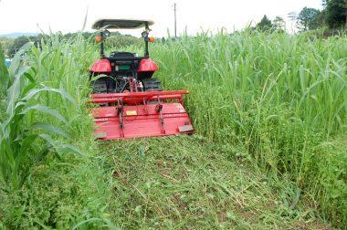 トラクターのロータリー回転を上げて一回目は浅く 耕す(倒す)