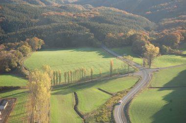 七塚原の牧草とポプラ並木