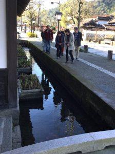 側溝の鯉を観ながら古い街並みを散策