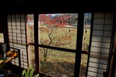 取材途中チョッと一息 マユミの葉も落ち始めていた