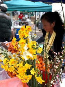 山口県の大島からは柑橘類と春の花も