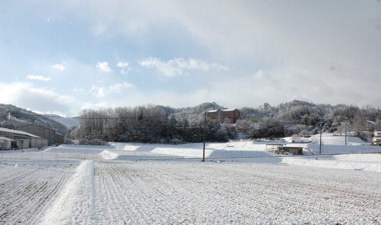 雪がやむ 庭から南を見る