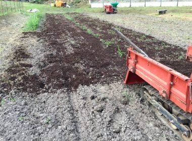 モミガラ発酵堆肥は手蒔きした