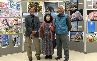 普段も日本中の一本桜や息をのむ様な素晴らしい写真を見せてもらっている