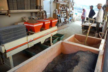 播種機に苗箱、床土、種籾、覆土を入れておくと自動で出来上がってくる