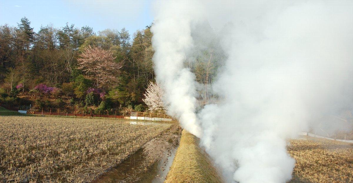 アゼ草を燃やす