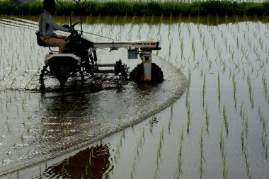 田んぼの状態が良かったら10aを30分で除草できる