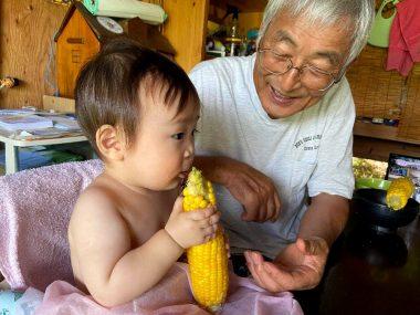 孫はこのままではまだ食べれないが大人が食べると欲しがる