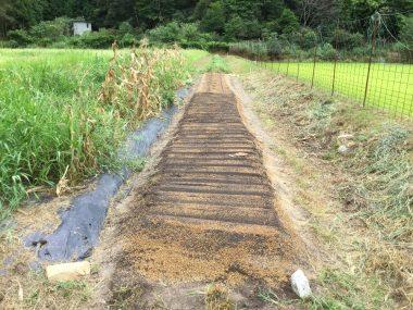 種蒔きが終わって籾殻と水をかける