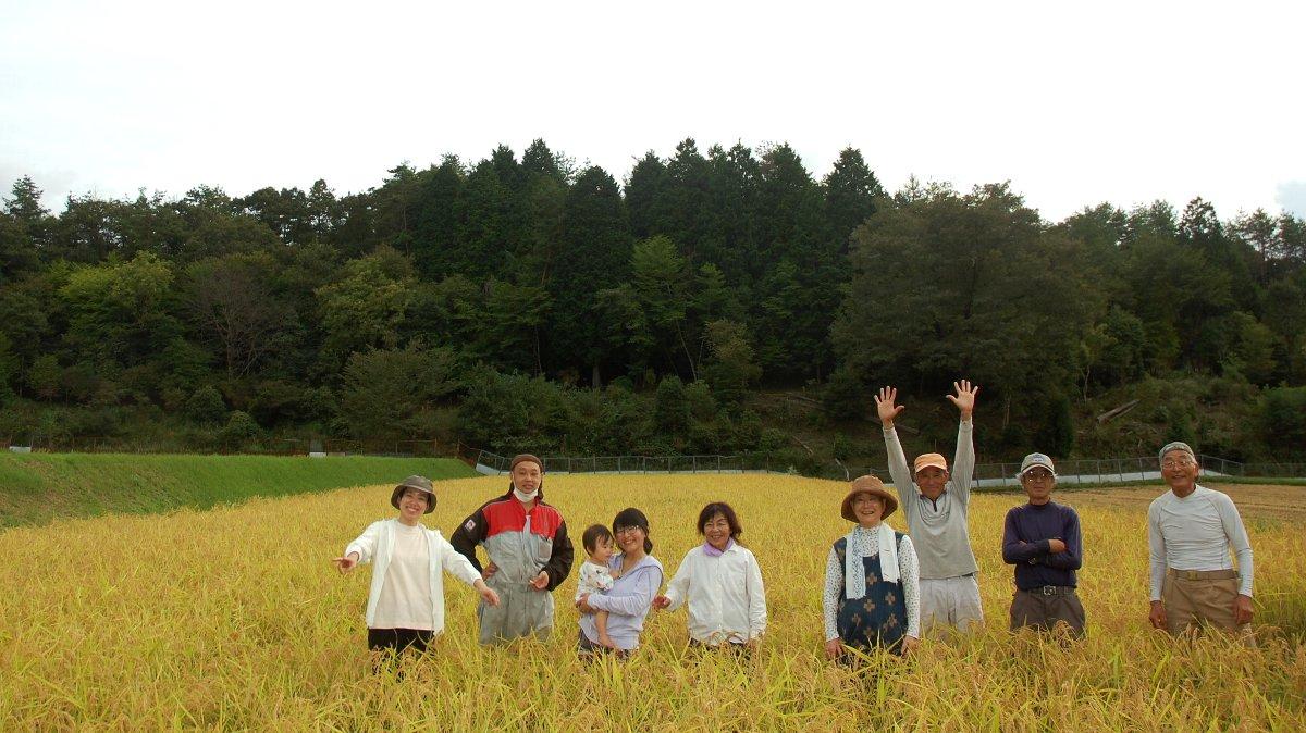 この田んぼを収穫したら今年の稲刈終了!