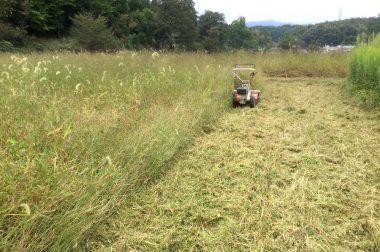 フレールモアのハンマーナイフに草が絡みついてエンジンが止まる