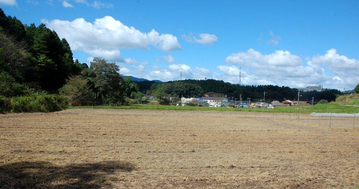 草刈と除草耕起が完了